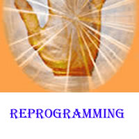 Reprogramming your Brain